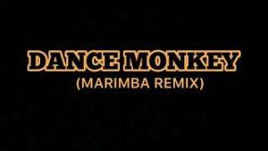 Tonos de llamada Dance Monkey Marimba