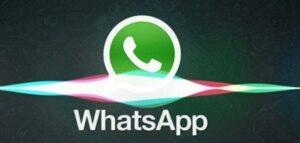 Tonos de llamada Whatsapp de hermano